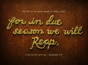 From BibleScreen.com